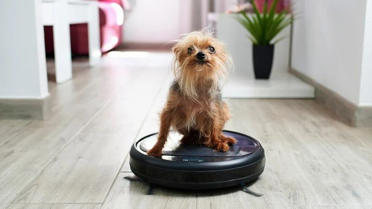 Why Should You Buy A Robot Vacuum For Laminate Floors?